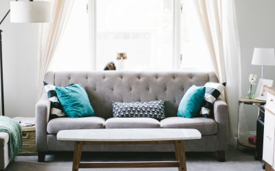 sofa cleaning Charlotte NC